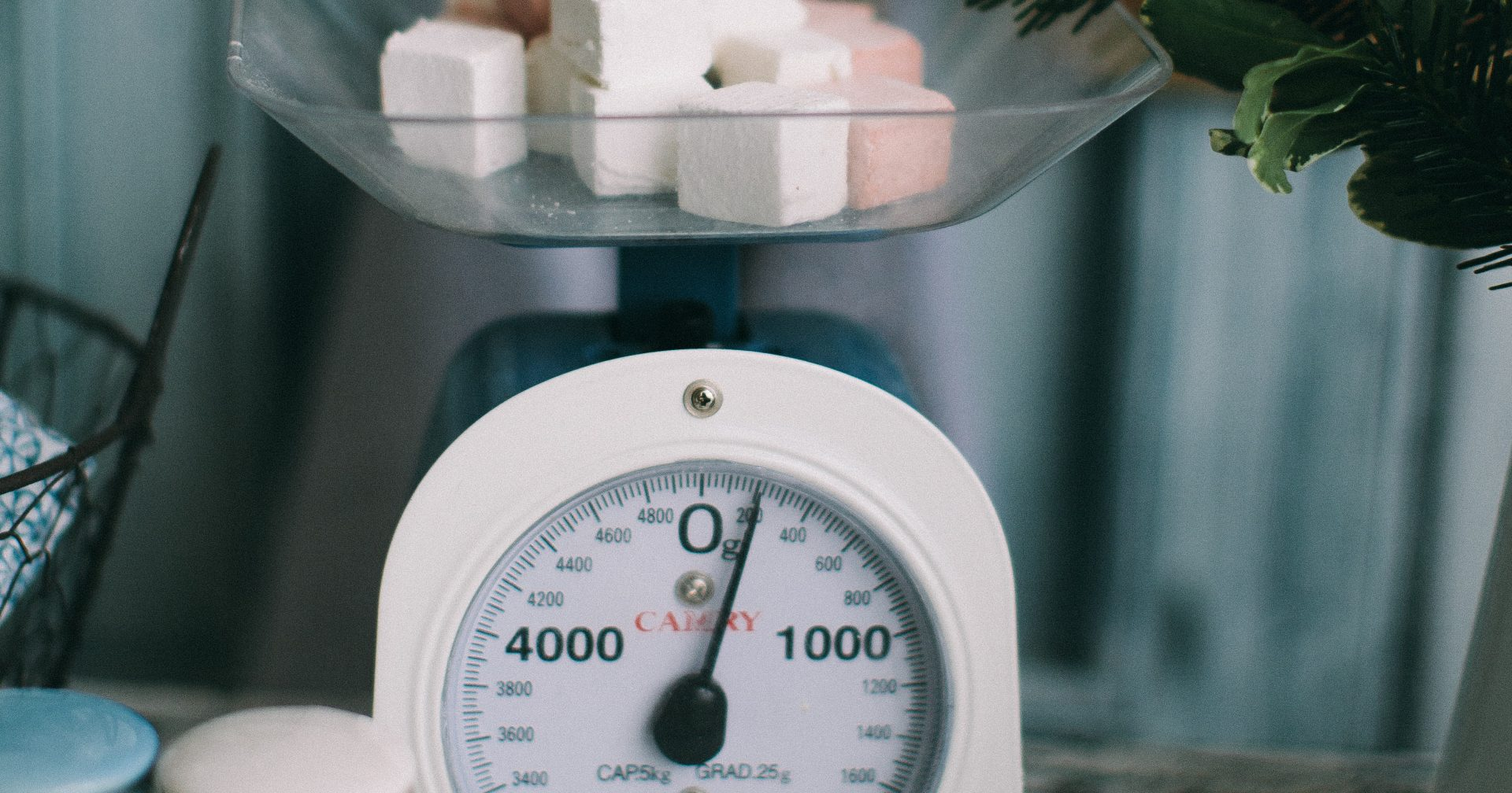 Conteggio calorie